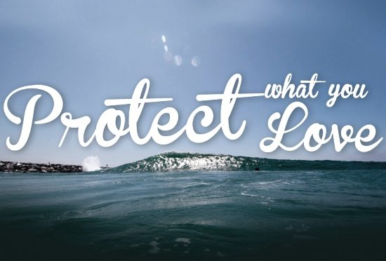 Protect what you Love - Surfrider Foundation