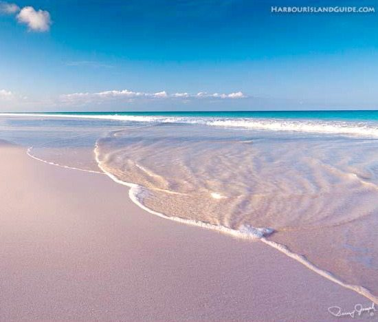 Best unique beaches in the world beach bliss living for Pink sand beaches bahamas