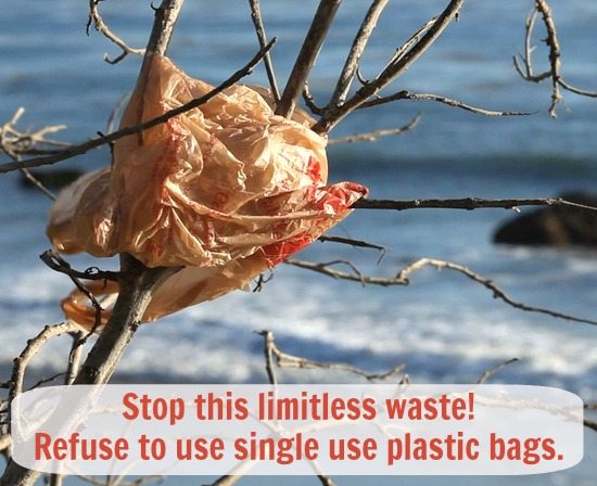 Single use Plastic Bag Ocean Waste