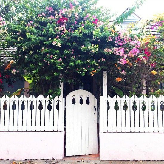 House with Pineapple Fence on Harbour Island