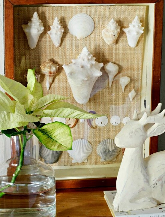 Framed Shell Decor