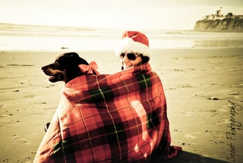 Christmas on the Beach with Dog Photo Shoot