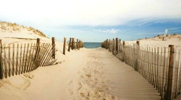 Beach Bliss Online Stores Shopping Sources