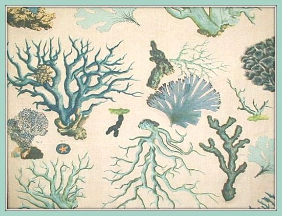 Sealife Coral Fabric blue